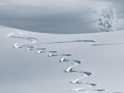 Sciator, ripete il vento…